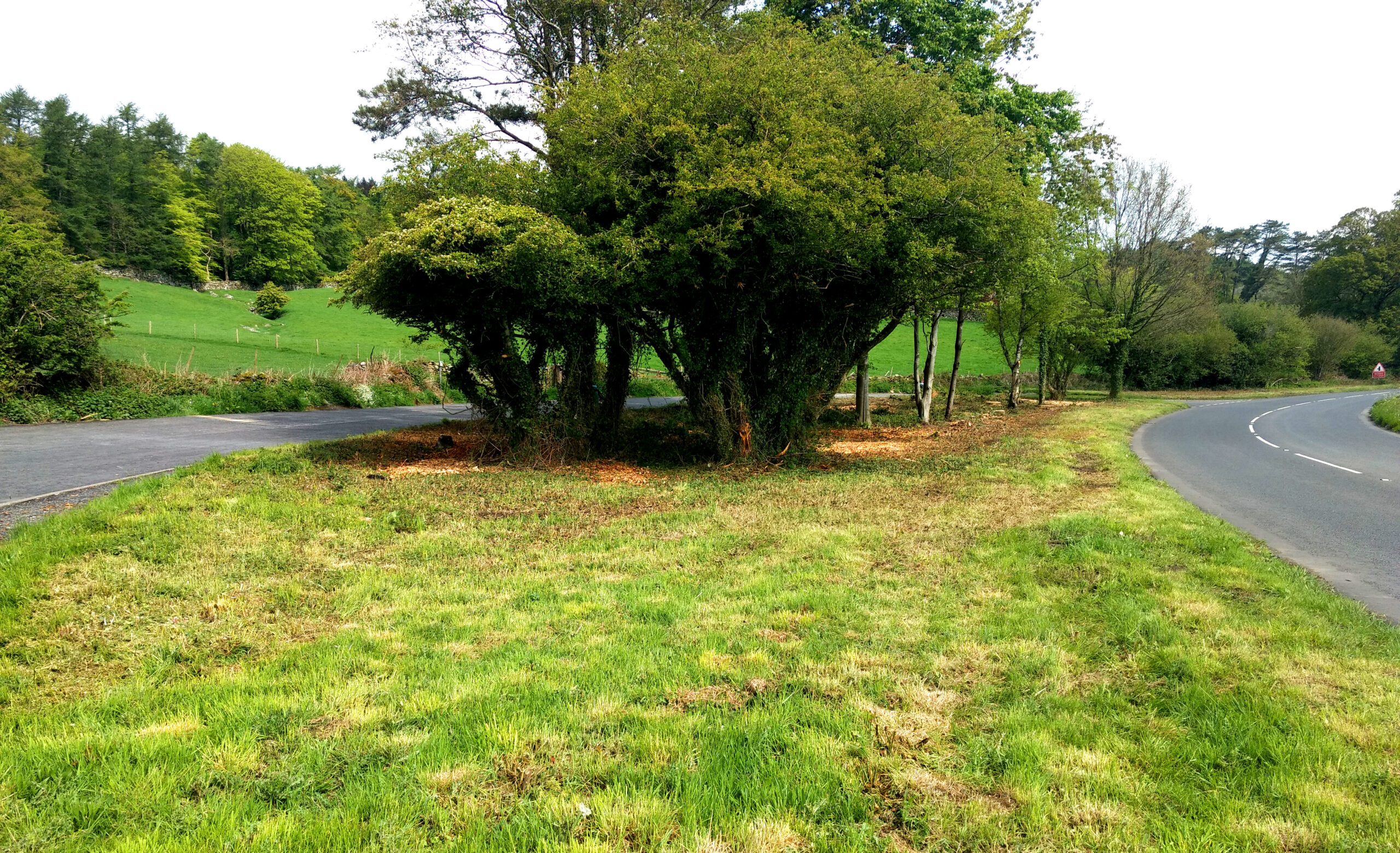 Quarry Layby after treework and litter-picking